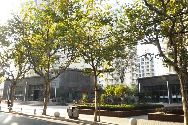 杨浦233街坊